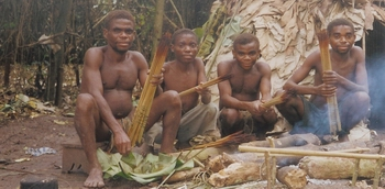 Pygmy hunters making poisonous arrows